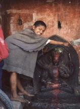 Saran 1993